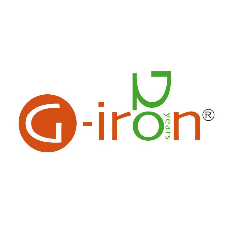 Logo Azienda G-IRON rielaborato per anniversario 20 anni